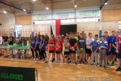 Tenis polfinal